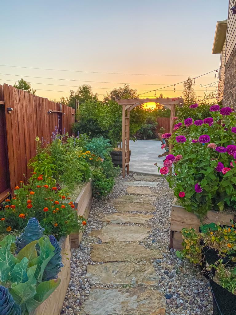Backyard Orchard and Vegetable Garden