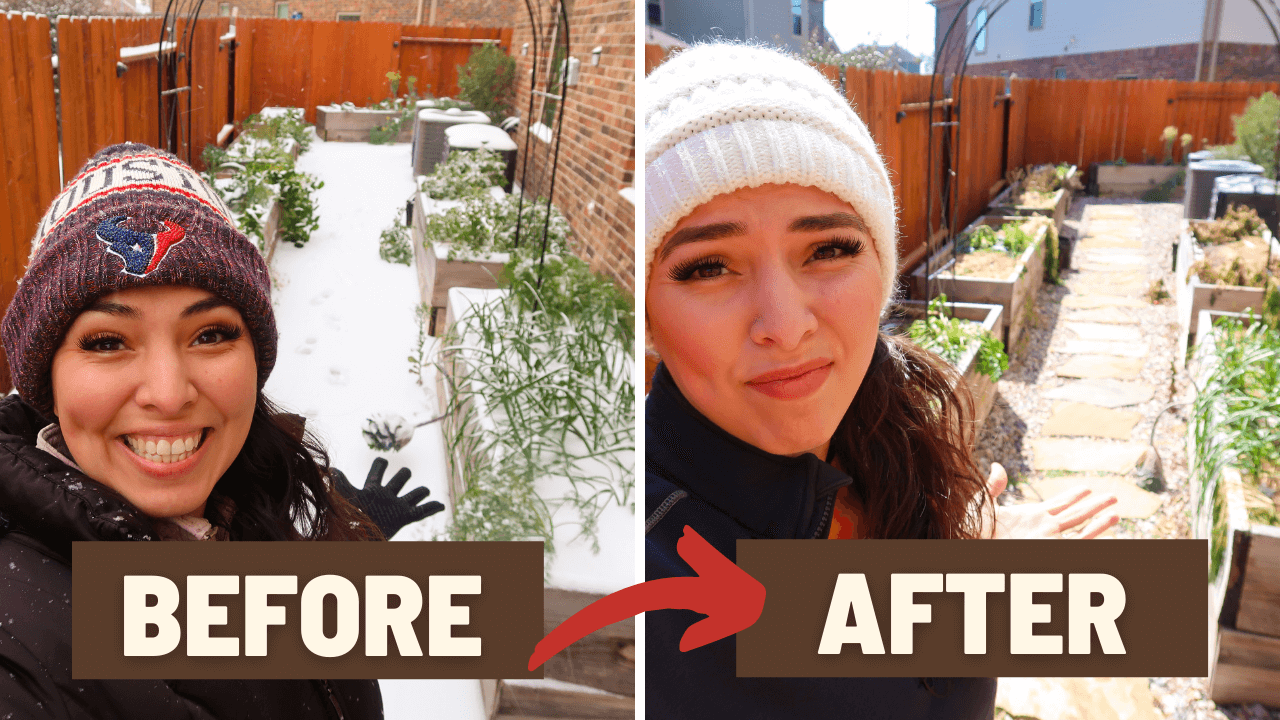Before and After Snow Storm