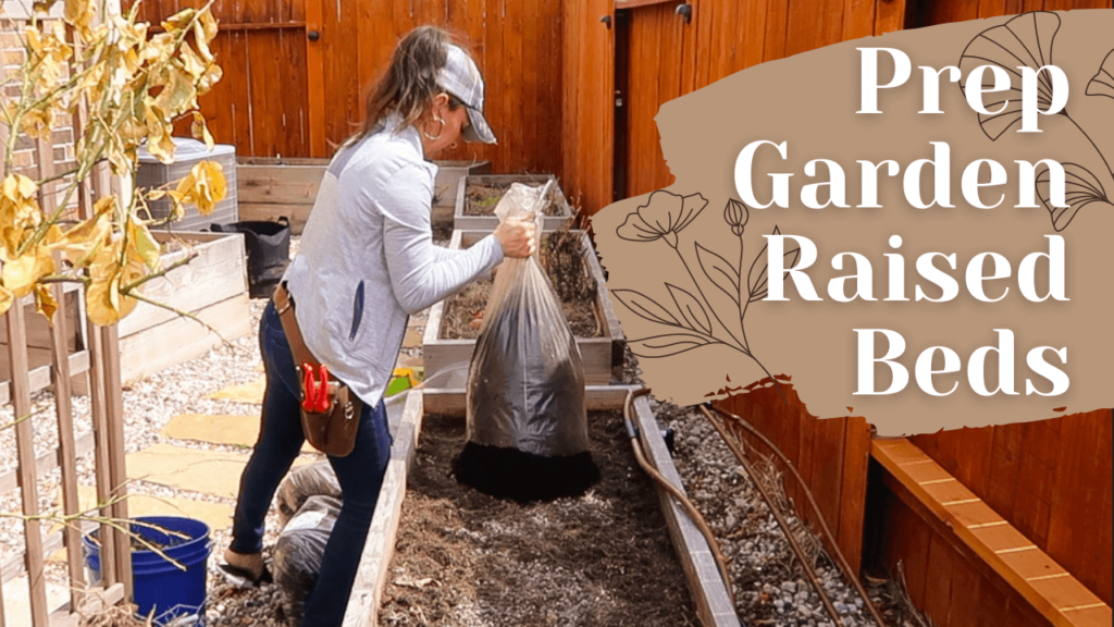 Prepping Raised Beds